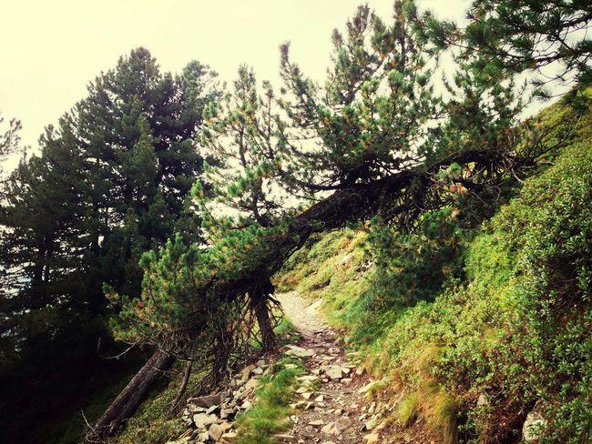 Mountains Dolomites, Italy Taking Photos