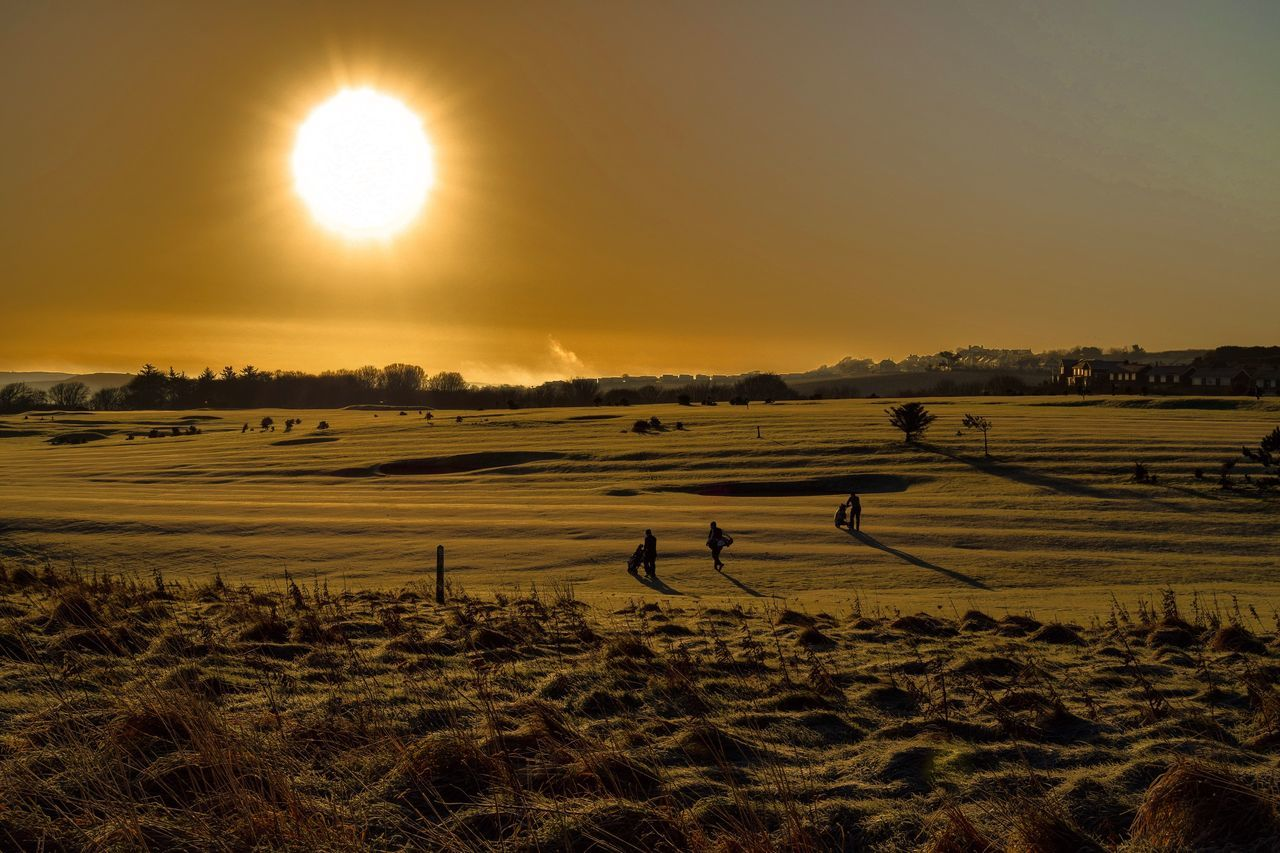 South cliff golf course, Scarborough, North Yorkshire, England. Sunset Field Sun Landscape Beauty In Nature Tranquil Scene Nature Scenics Outdoors Silhouette Tranquility Sky Rural Scene Sunlight Grass Tree Golfing Golf Course Golf Club Golf ⛳ Golfclub