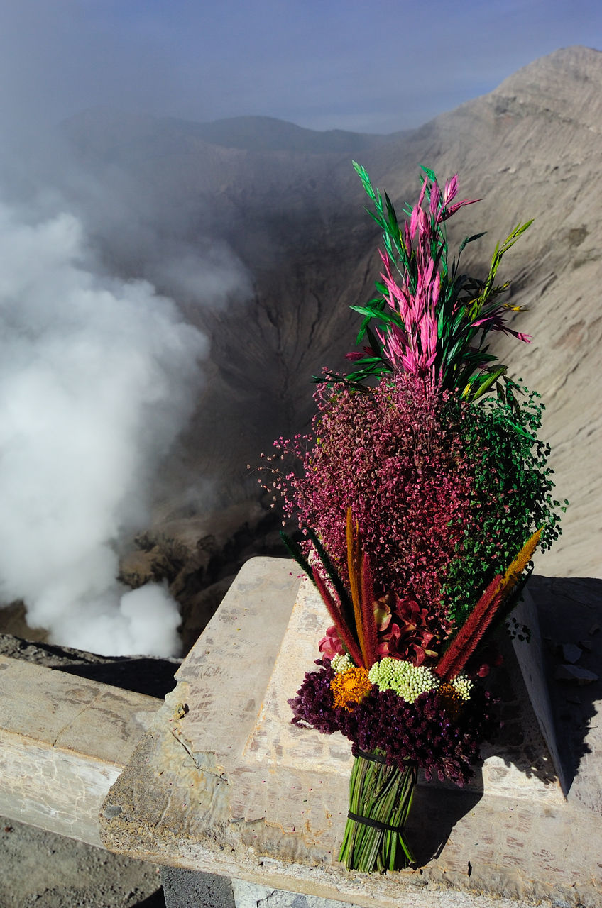 Close-Up of Bouquet With Smoke Emitting Volcano In Background