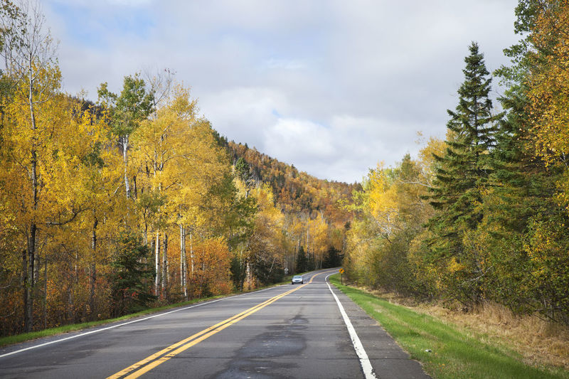 Road in northern Minnesota surrounded by hills and trees in fall color Automobile Autumn Birch Car Clouds Color Curve Fall Highway Hills Landscape Minnesota North Shore Pine Road Scenics Sunlight Tourism Travel Trees