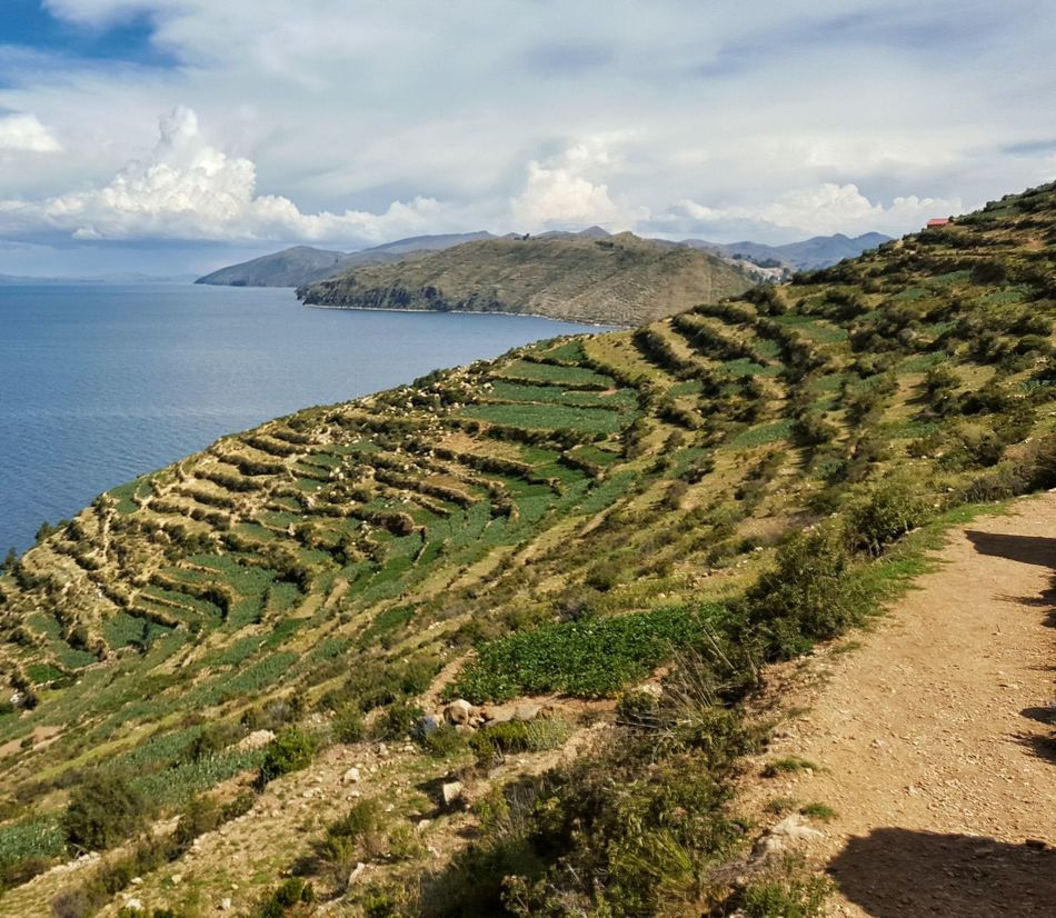 Peru Fields Landscape Islands Lake Lush Green Lush Green Fields Green Lush Green Color Blue Sky Blue Sky And Clouds The Great Outdoors With Adobe