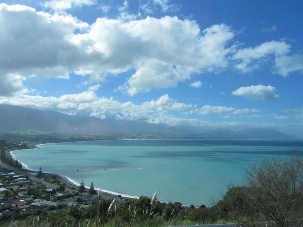 Homesick  New Zealand Kaikoura