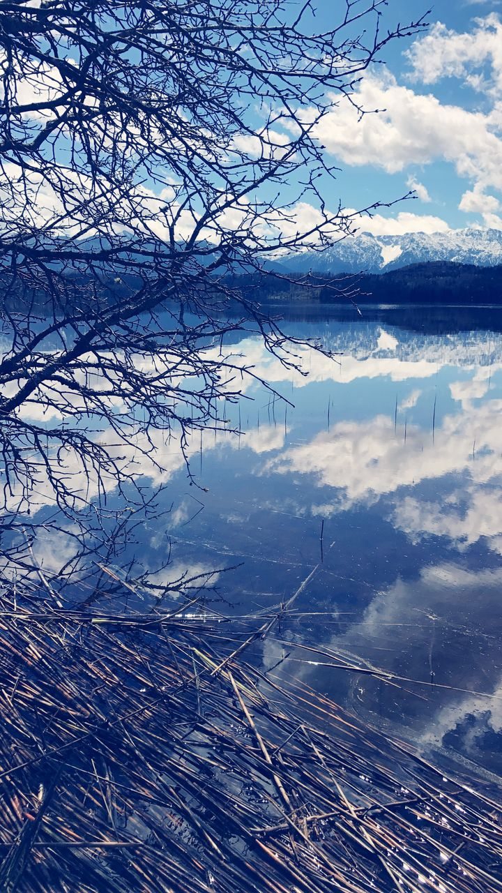 beauty in nature, nature, tranquil scene, tranquility, sky, no people, outdoors, bare tree, cloud - sky, day, tree, scenics, branch, water