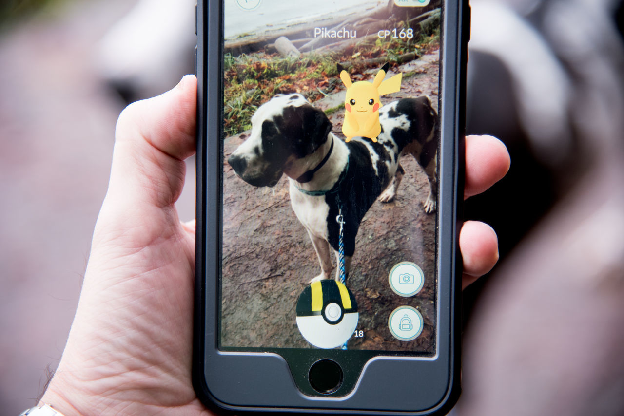 Gotta Catch'Em All Animal Themes App Augmented Reality Close-up Day Dog Domestic Animals Game GottaCatchEmAll Great Dane Harlequin Holding Human Body Part Human Hand Mammal One Animal One Person Outdoors People Pets Pikachu Point Of View Pokémon Real People Technology