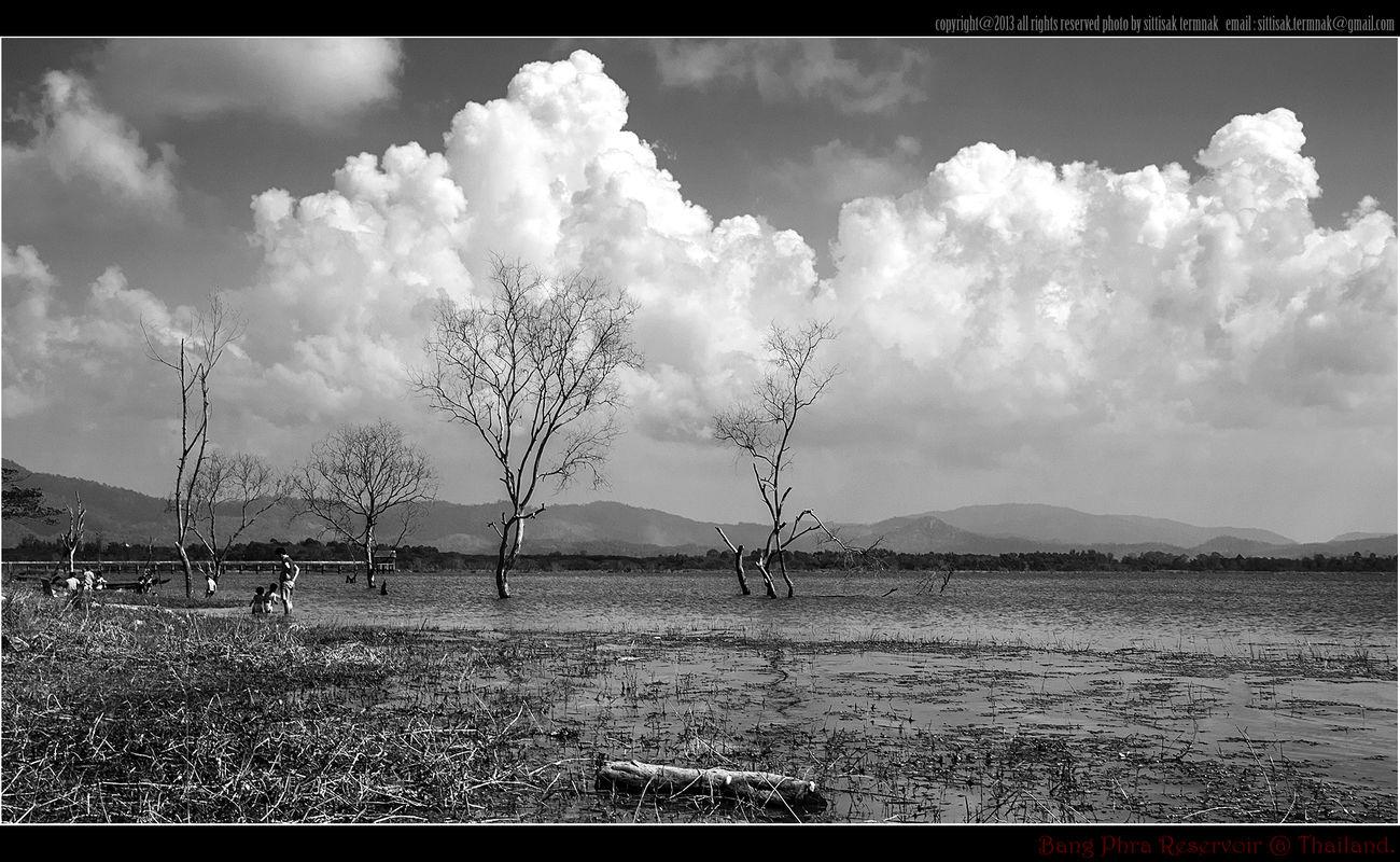 Bang Phra Reservoir, Thailand. Landscape_Collection Blackandwhite Thailand_allshots Lanscape Photography