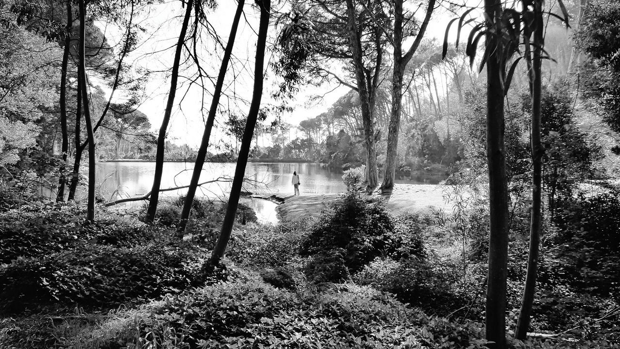 Lagoa Azul BYOPaper! Tree Nature Growth Grass Outdoors Sky Water Beauty In Nature Alone In Nature Woman Standing In The Distance Woman Standing Black & White Black And White Scenic Lookout Monochrome Monochrome Photography Day Real People Beauty In Nature The Great Outdoors - 2017 EyeEm Awards