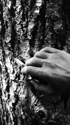 Hand After Life Looking For Her EyeEm Eyeemphotography EyeEm Gallery Fine Art Photography Fine Art Showcase July Love Welcome To Black