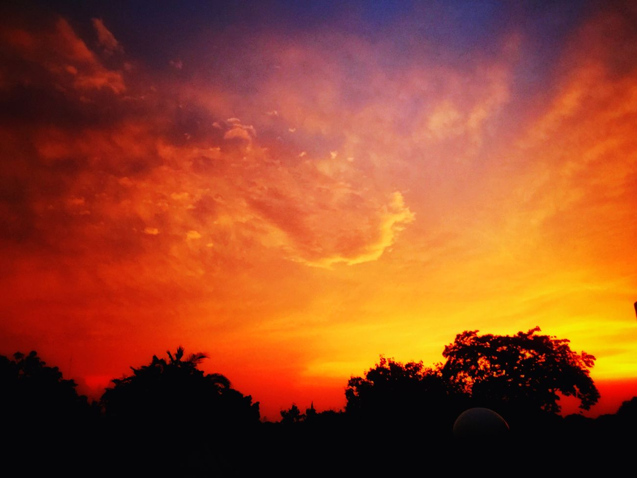 Like a fireball you consumed my everything. Sunset Cloudporn Clouds And Sky EyeEm Best Shots Eye4photography  Amazing_captures Lookingup EyeEm Nature Lover Beautiful Surroundings Eyeem Philippines
