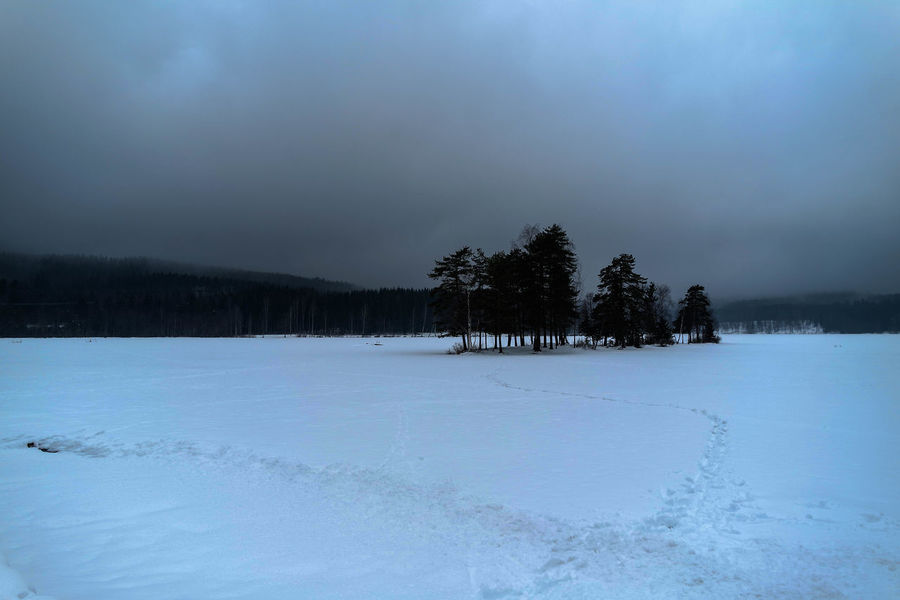 SOGNSVANN 2/3 Outdoors Landscape Stream Winter Snow Trees Europe Norway Oslo Sognsvann