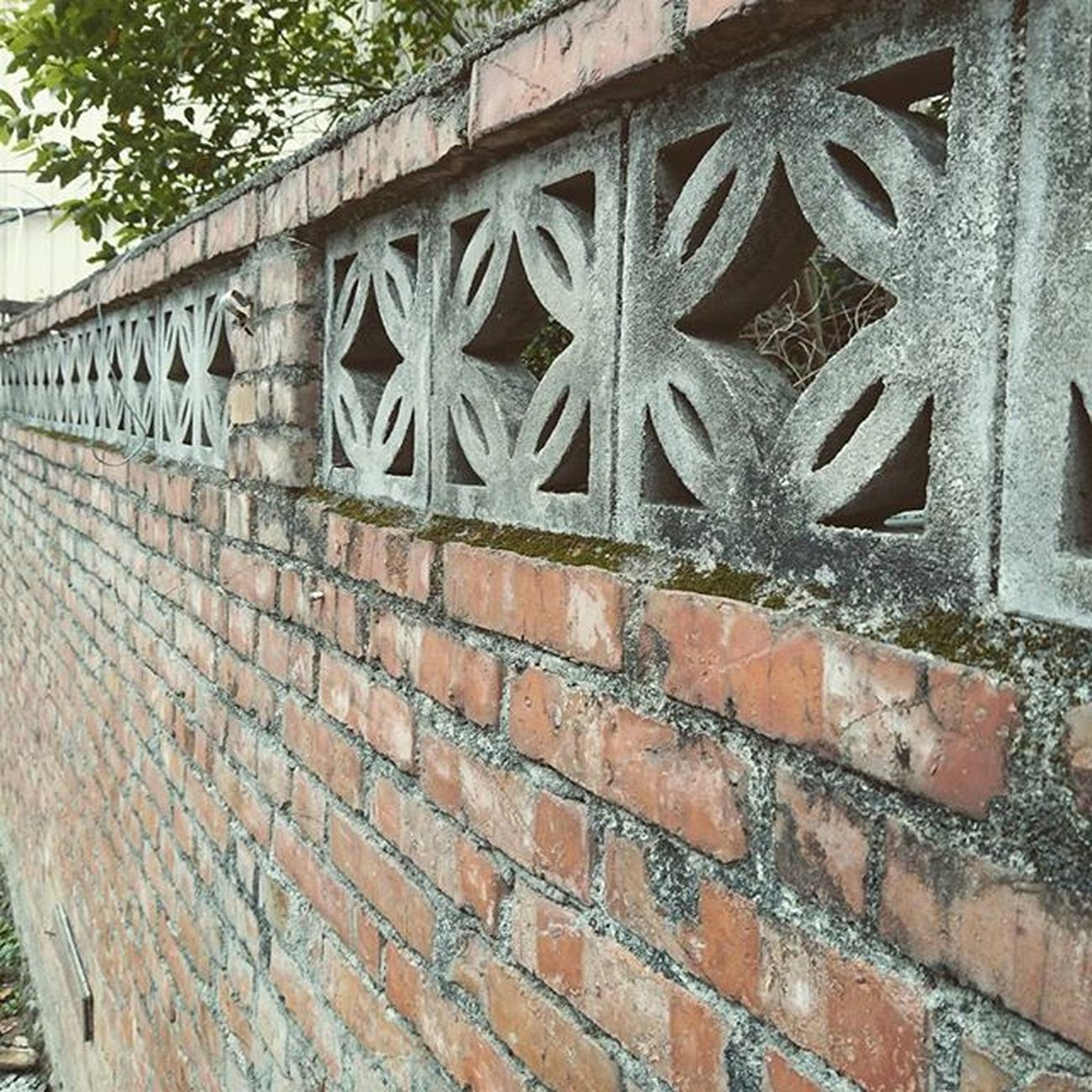 Wall Brick Red Taiwan Shinchu 紅磚 牆 . 水泥花磚 Photograph 美麗的舊紅磚牆。
