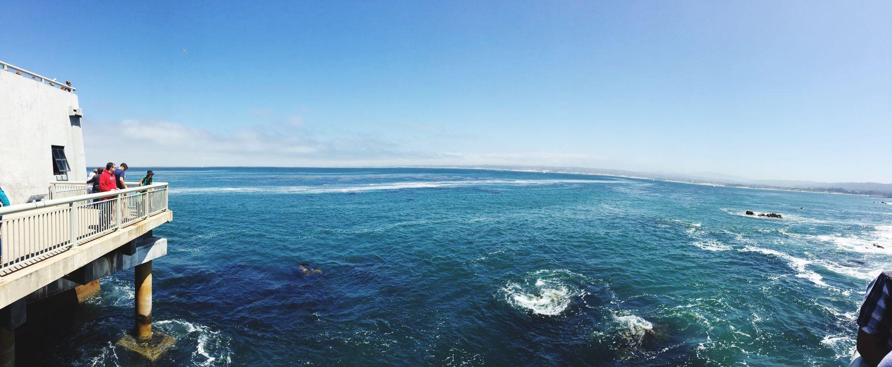 Pacific Ocean Monterey Bay California Eyemnaturelover Nature