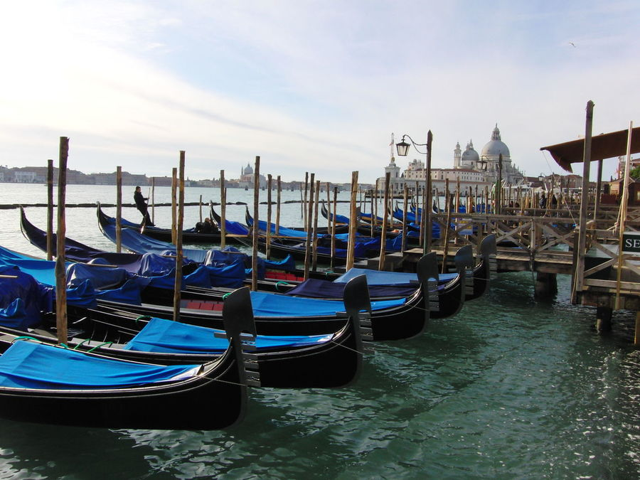 Canal Gondola Gondola - Traditional Boat Gondolas Venice In A Row Moored Transportation Travel Destinations Venice, Italy Water Waterfront