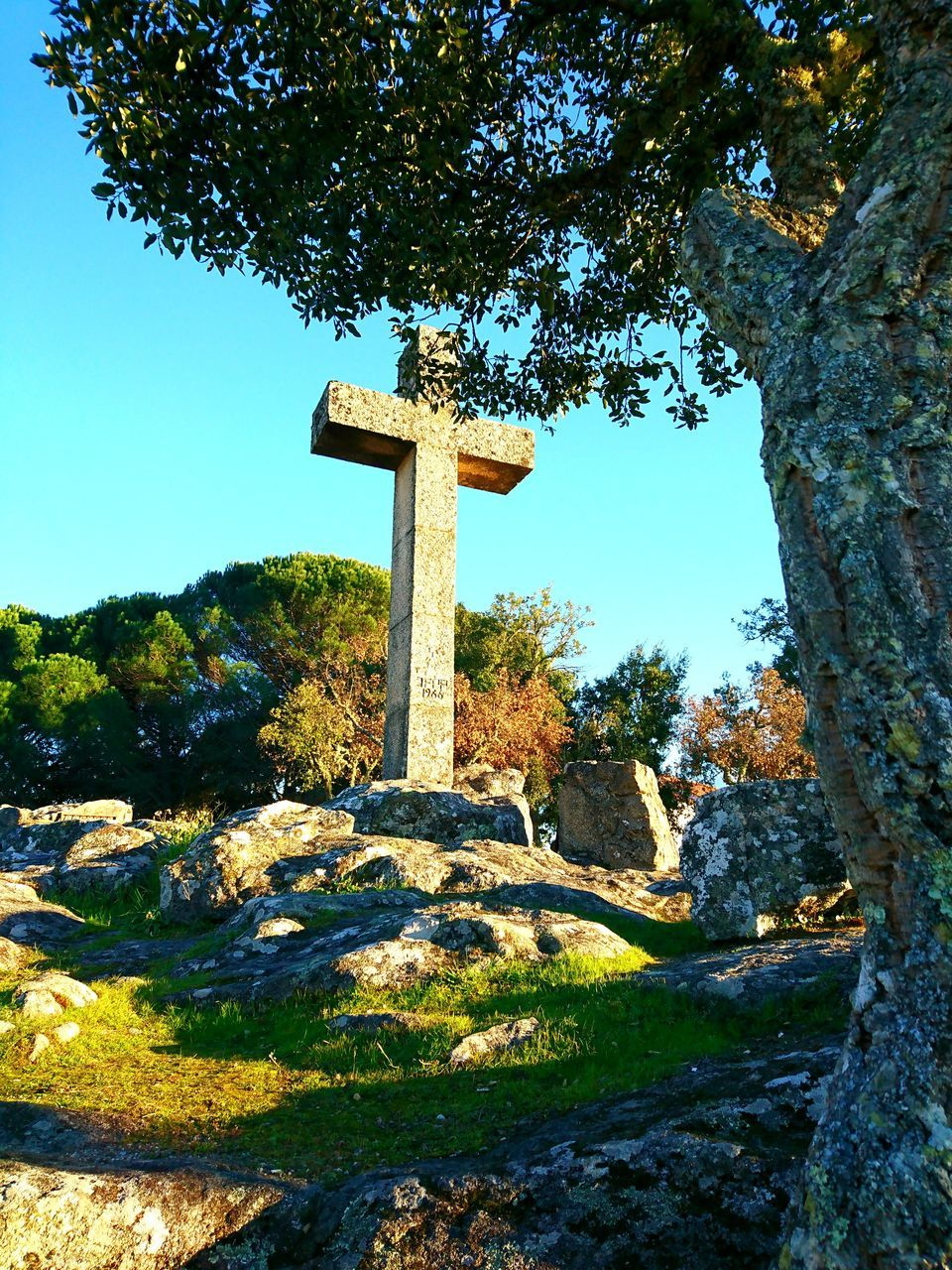 religion, cross, spirituality, stone material, green color, tree, day, low angle view, no people, statue, outdoors, sky