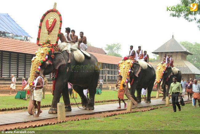 Kerala Kerala The Gods Own Country ;) Kerala_tourism