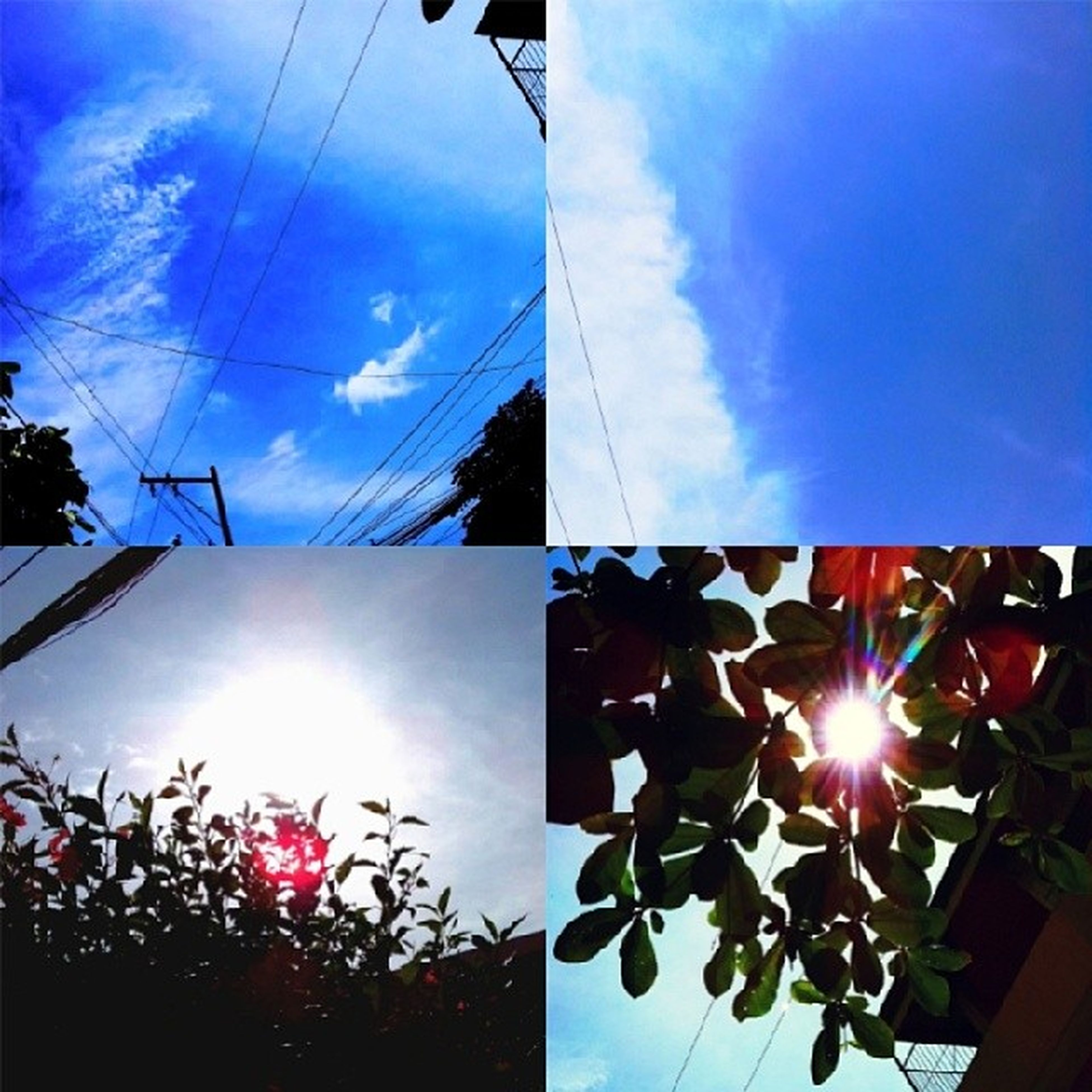 low angle view, sun, sky, sunbeam, blue, built structure, sunlight, architecture, lens flare, cloud - sky, building exterior, cloud, tree, day, power line, no people, outdoors, bright, sunny, nature