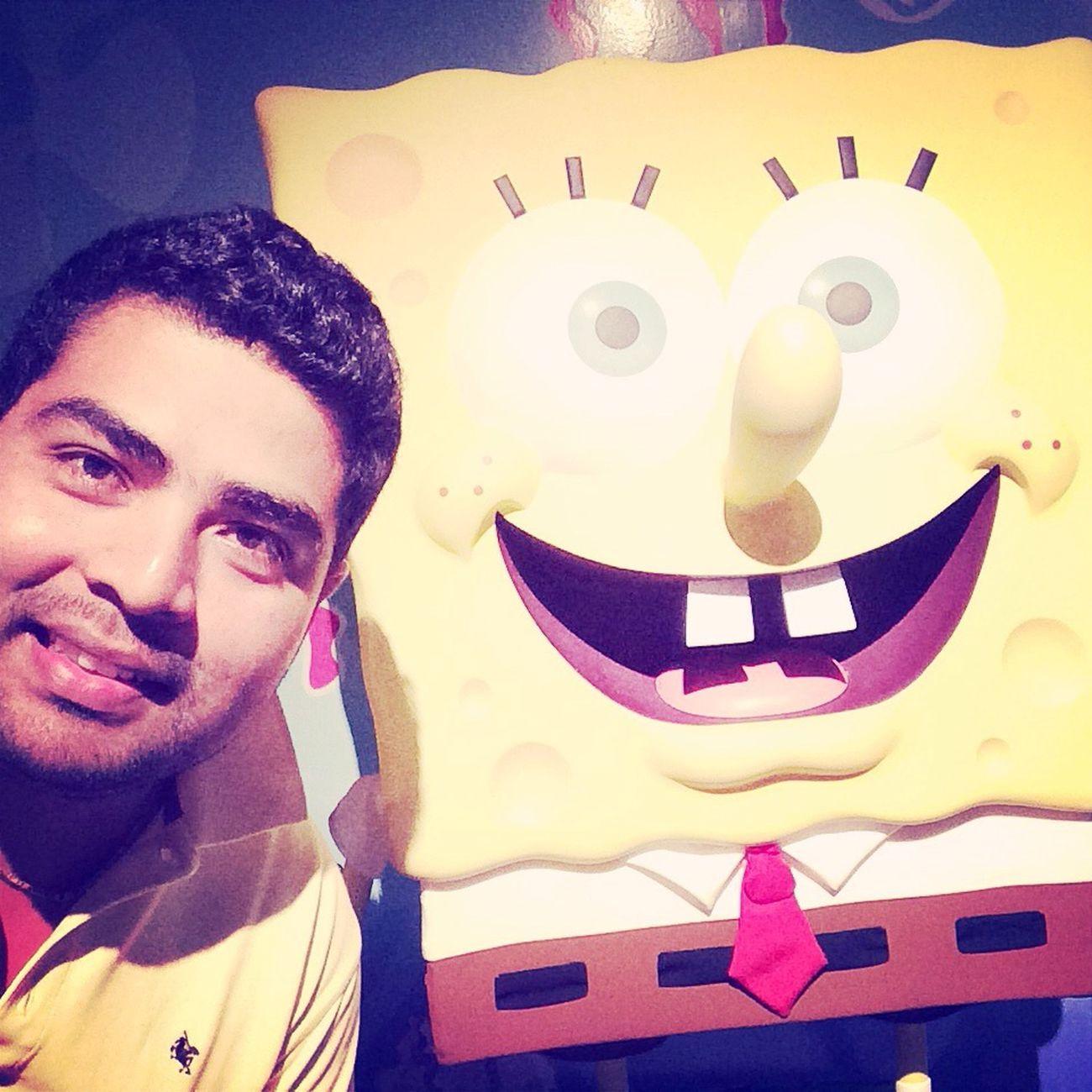 Con bob
