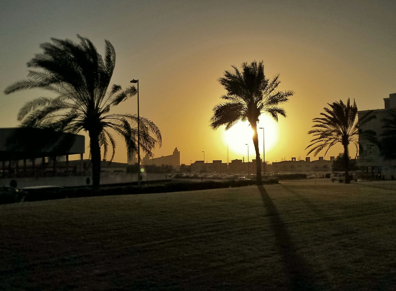 Enjoying The Sun Soaking Up The Sun Sunset