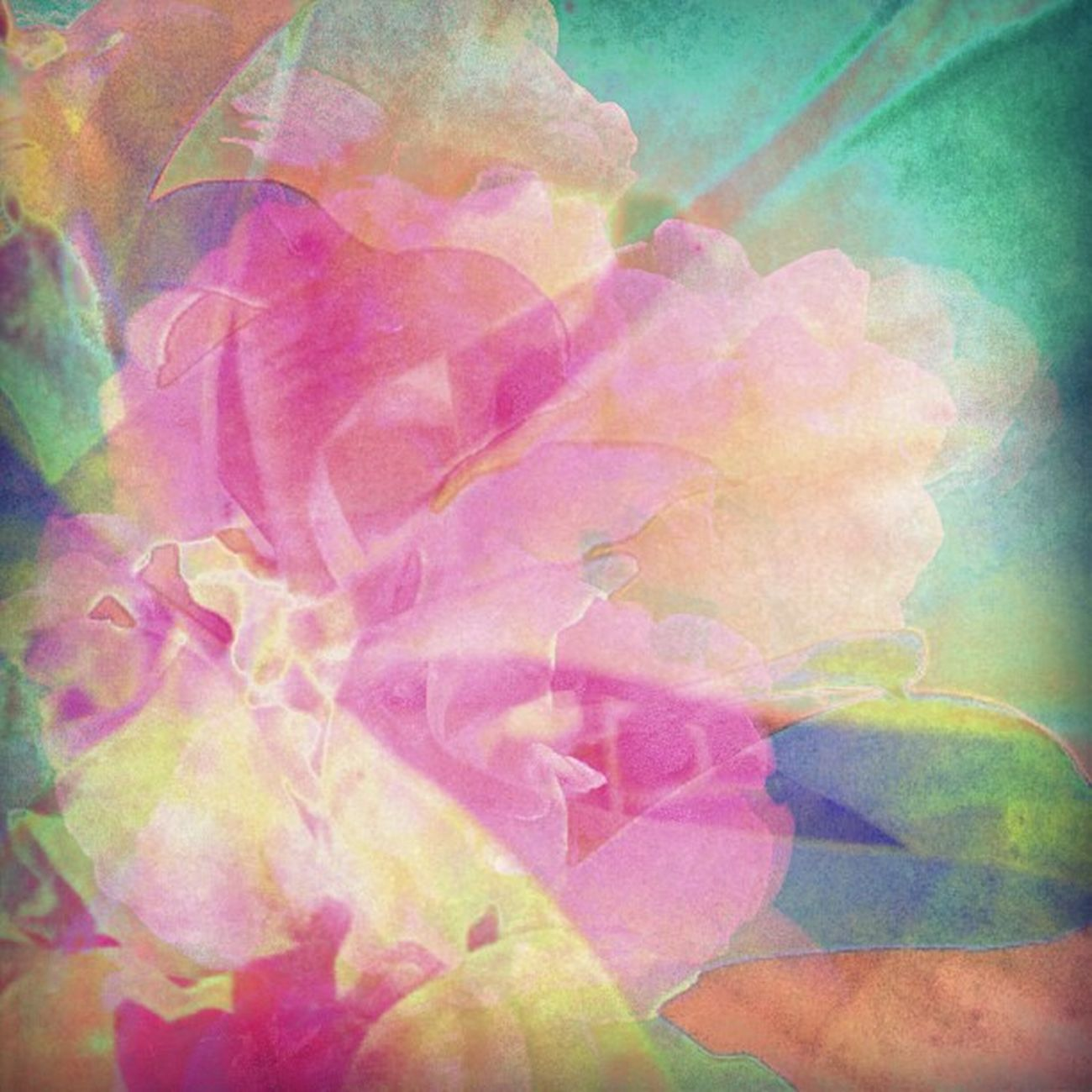 Softly Soaring on Angel Wings Happycolortrip Coloronroids Abstracto Dhexpose All_shots Ace_ StayABSTRACT Deadlydivas Abstractart Ig_one Gang_family Icatching Editjunky Femme_elite Instauno Weareinheaven Igsg You_nique_edits Bd Mi55flowerz Abstracters_anonymous Edit_fever Abstract_buff Abstractobsession Instaabstract Ig_captures