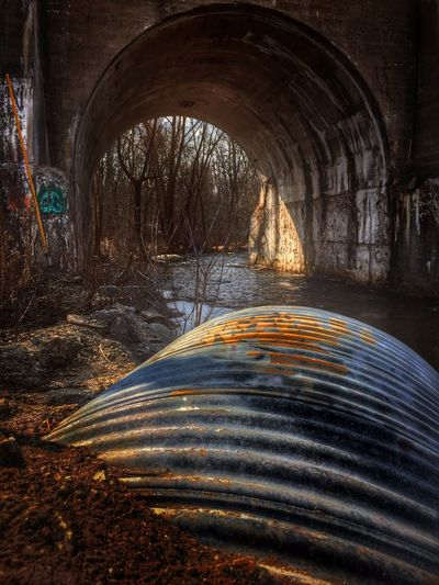 I capture a lot of arches and curved building and structures. It great when they get along as well as this shot! IPSWebsite Tunnel Trees Graffiti Colorful Curves Pipe Rusty