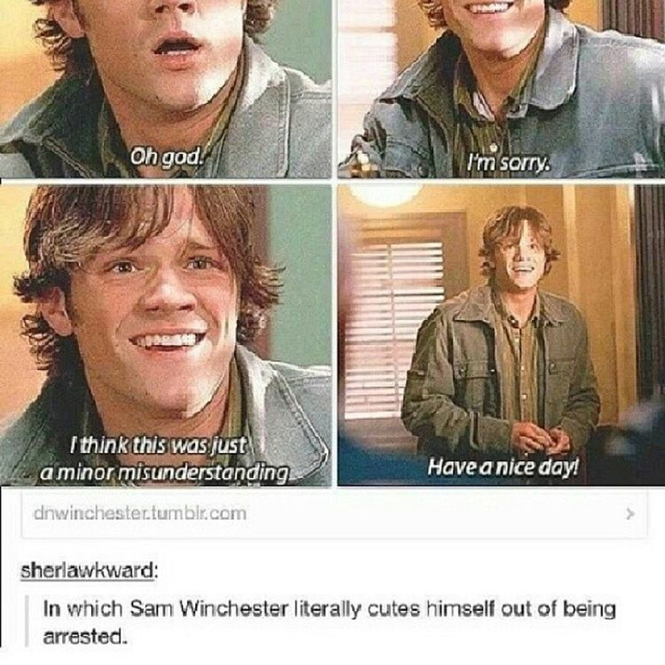Yes. You understand <3 @neonlightsaber Supernatural Samwinchester Heissocute Goshdarnit tv adorkable idmarrythat justkidding noreallyiwould tumblr funny arrested fangirling ineedsomeicecream happysaturday