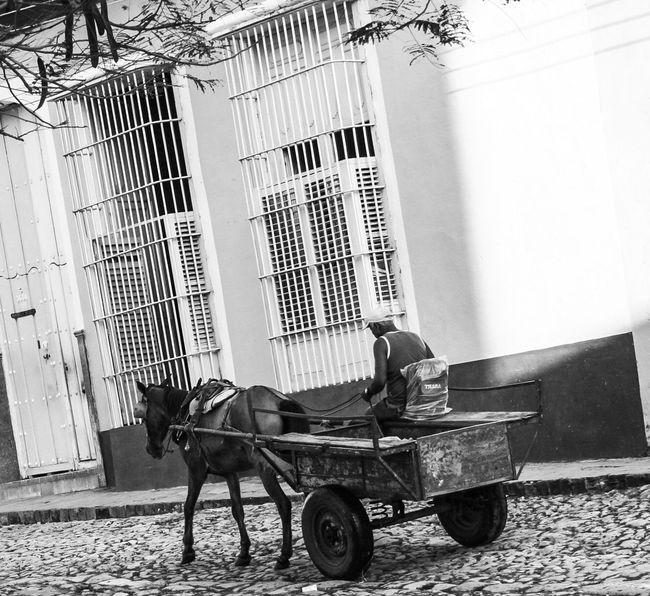 Cuba Trinidad Blackandwhite Horse-drawn Carriage