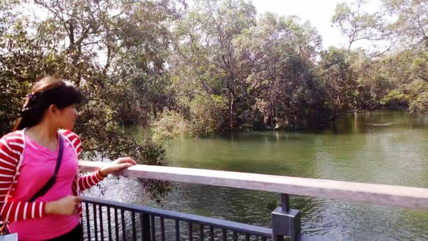 Railing Tree River Water Outdoors Day One Person Women Nature Young Adult Real People Only Women Beauty In Nature
