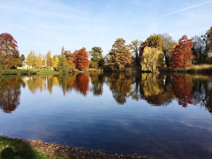 See, Potsdam, Herbst, Sanssouci, Bäume, Bunt, Blätter, Wasser, Park, Sonne, Fine Art Photography Nature Landscape Colour Of Life