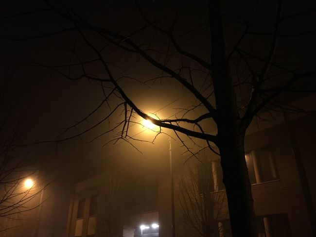 Foggy Cold Szeged Winter City Street Lights Iphonephotography IPhoneography Iphone6s Night