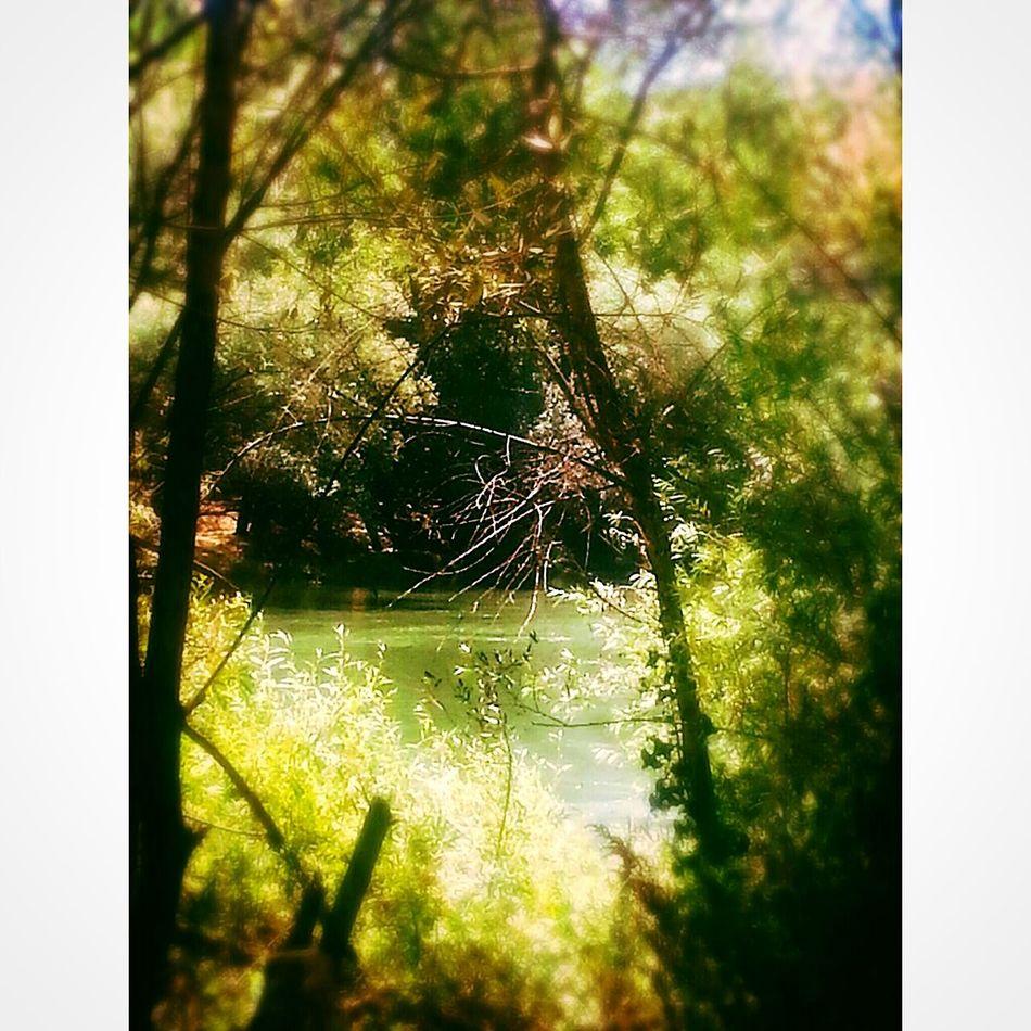 Kirikkale Enjoying Life Summertime Taking Photos Green Lovely Weather