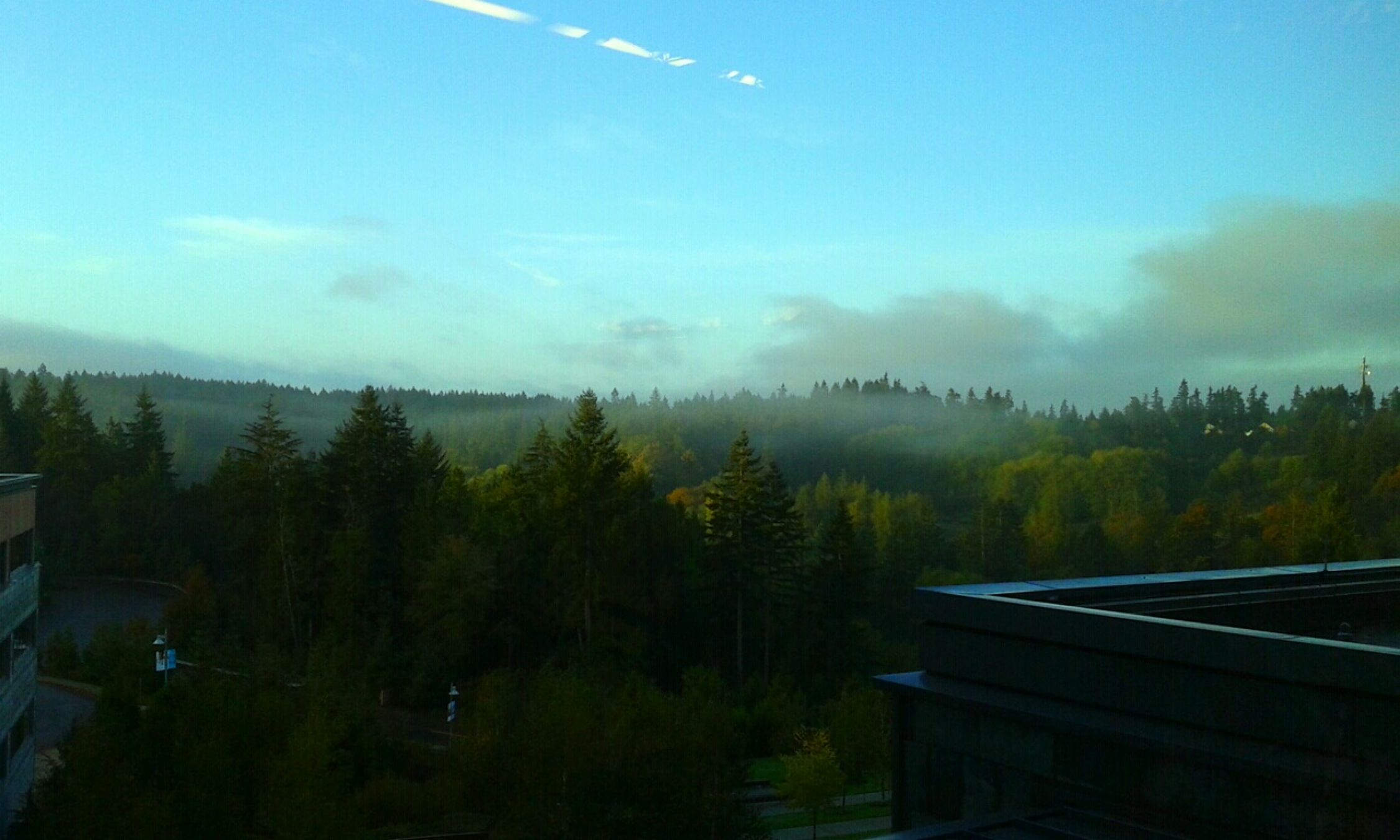 At Hospital Taking Photos Open Edit Pacific Northwest  Looking Out Of The Window Gig Harbor Landscape