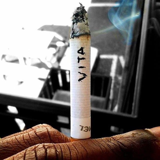 Mi Fumo Questa Vita chesiconsumapianounavitaandatainfumoletteralmentequasidegnoditumblrsmokeciccadelmattinocamelrelaxmacroinstasmoke