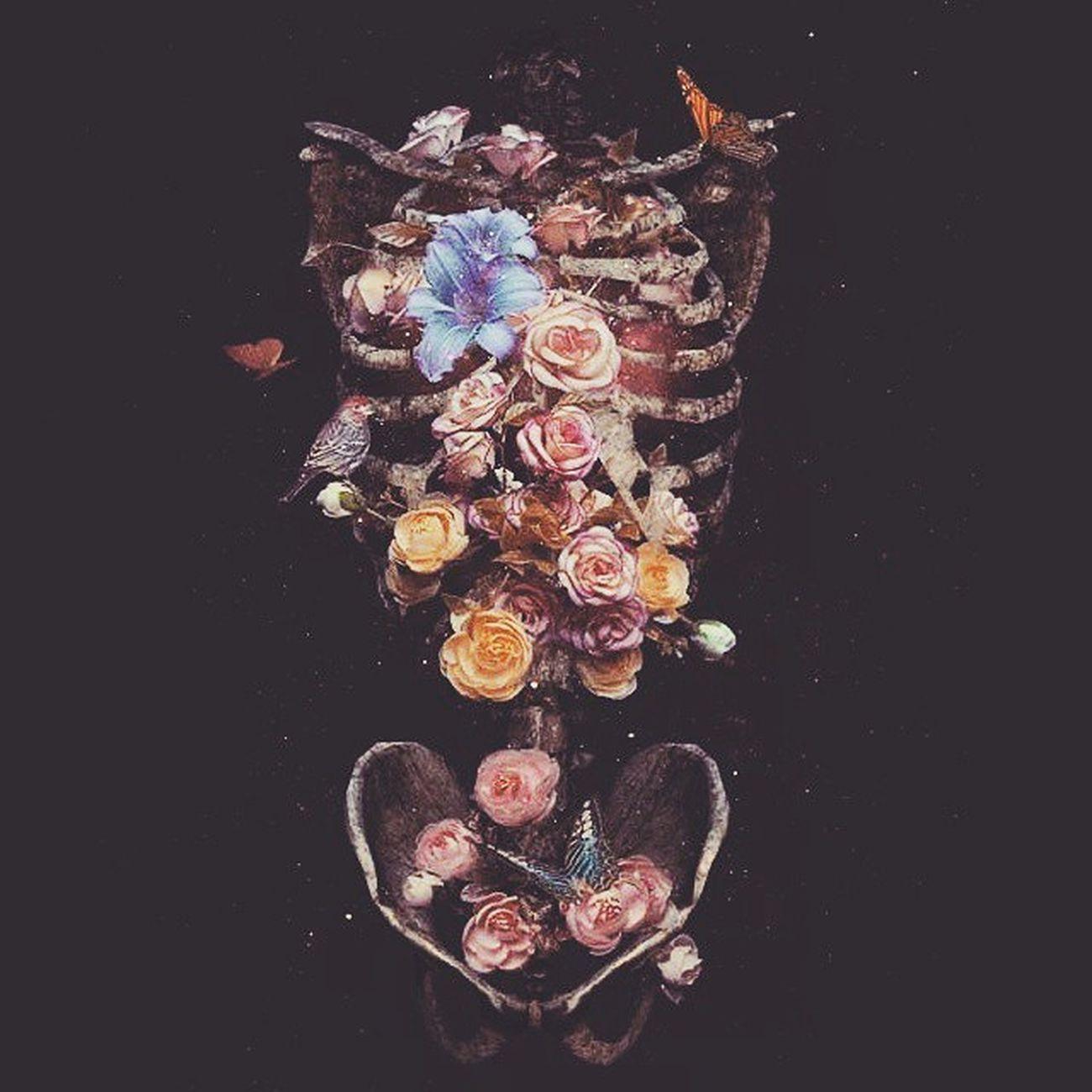 Adore Bones in Bloom Natalieshau