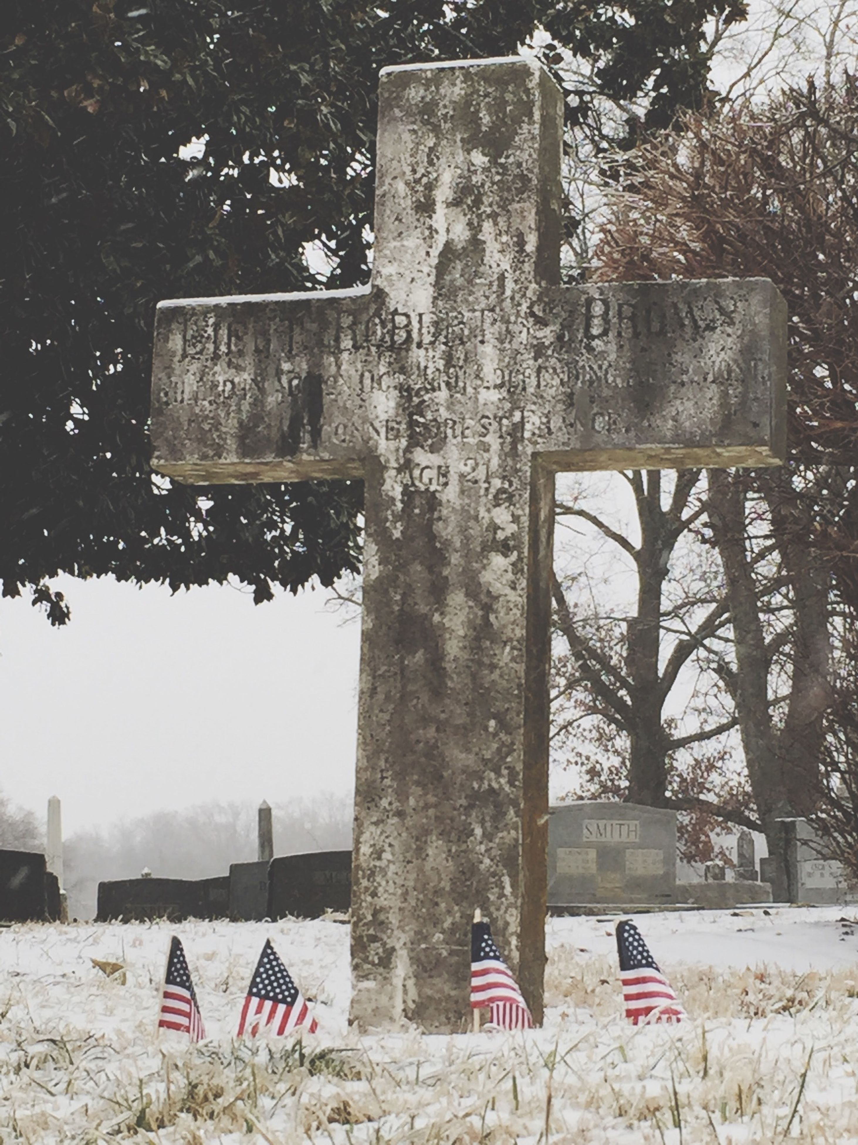 text, tree, chair, built structure, western script, day, communication, bench, architecture, absence, outdoors, building exterior, sunlight, protection, no people, bare tree, abandoned, safety, empty, tree trunk