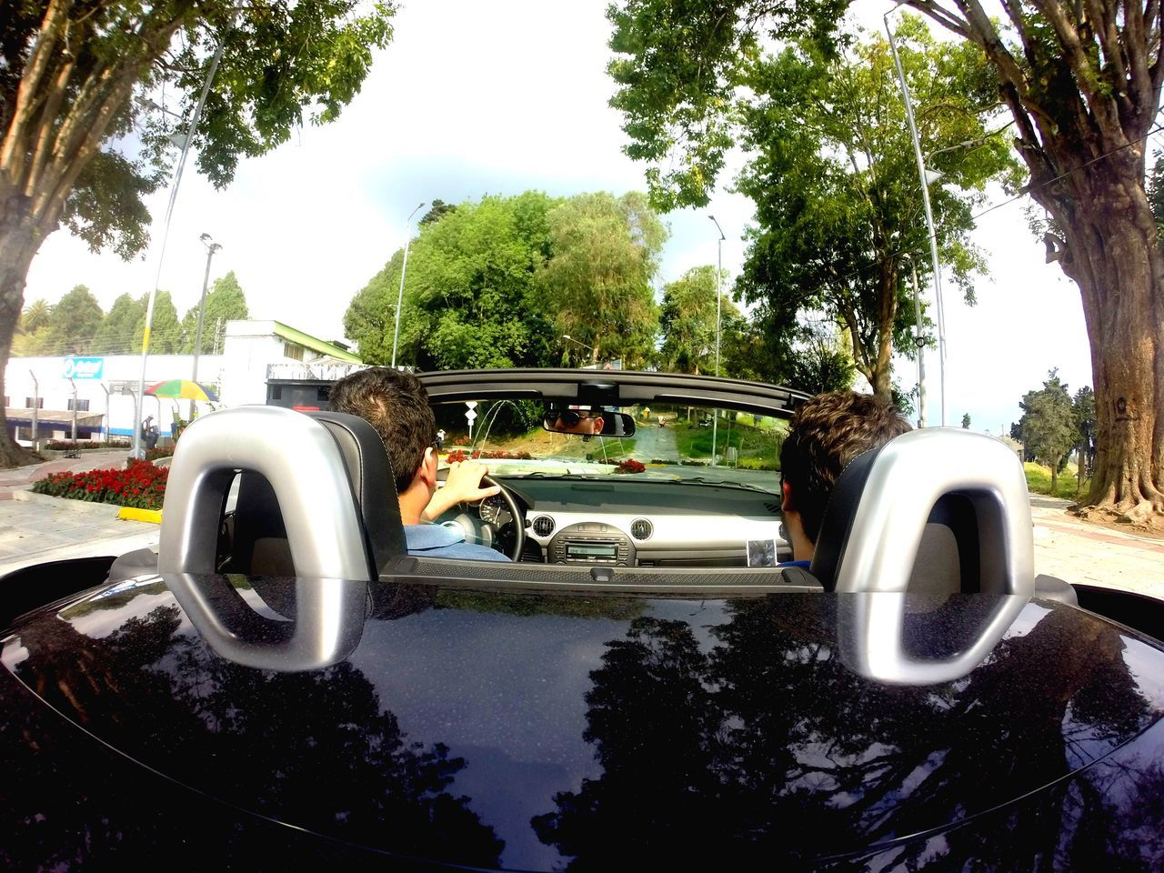 The Drive Tree Car Day Outdoors Sky Nature Cloud Lifestyles Cars Convertible Mazda Speed Friends Mirror Driving