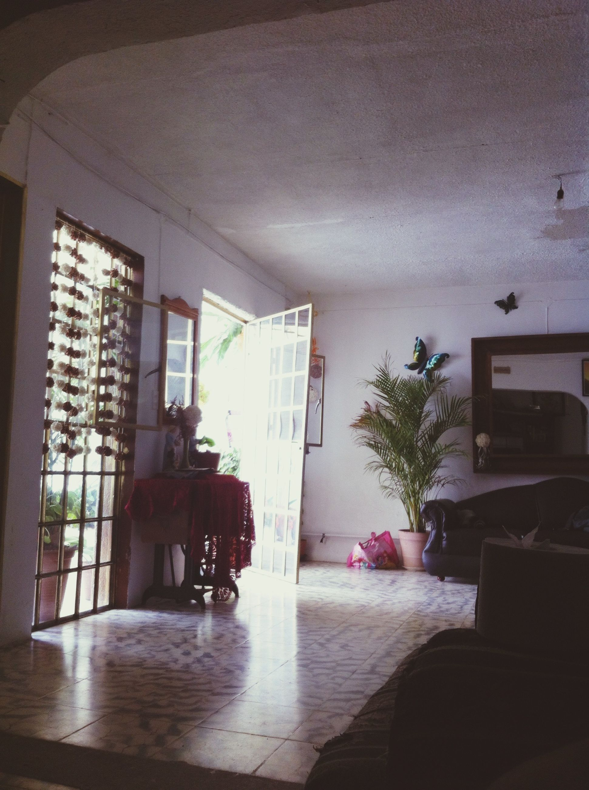 indoors, built structure, architecture, window, glass - material, chair, ceiling, table, potted plant, reflection, transparent, home interior, house, day, sunlight, flooring, absence, plant, no people, modern