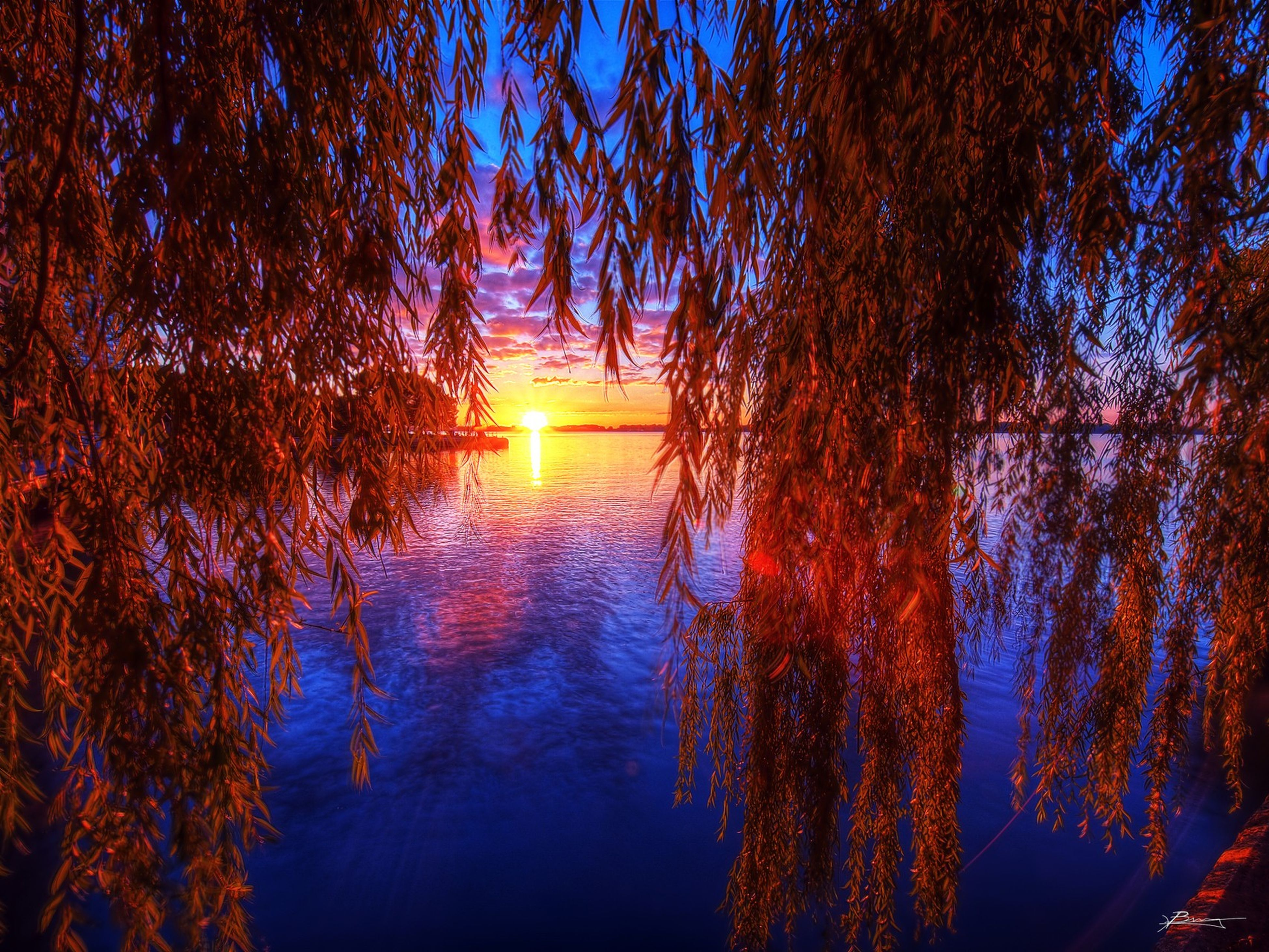 water, tranquility, tree, sunset, tranquil scene, reflection, scenics, beauty in nature, nature, lake, idyllic, orange color, sky, silhouette, sun, branch, sunlight, outdoors, no people, non-urban scene