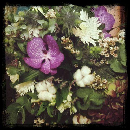 так цветы никогда не завянут First Eyeem Photo