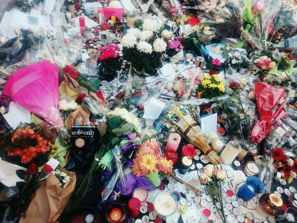 In memory / Paris Je T Aime ParisAttacks Flowers Inmemory Threeweeksafter Paris Fluctuat Nec Mergitur Ruedecrussol