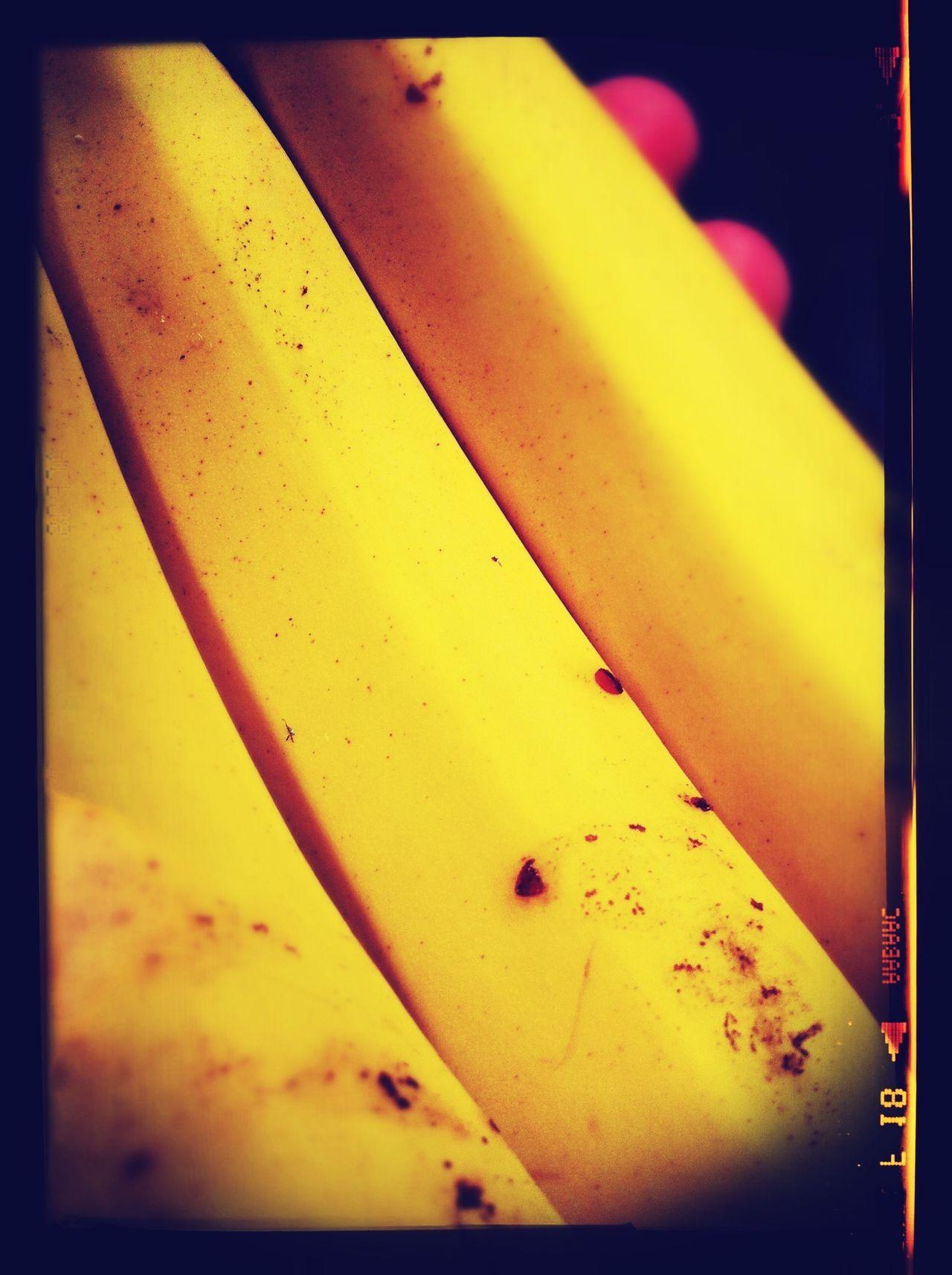 Dulce en su interior amarillo como el solplata no es Que es? ; ) Libre Como El Viento