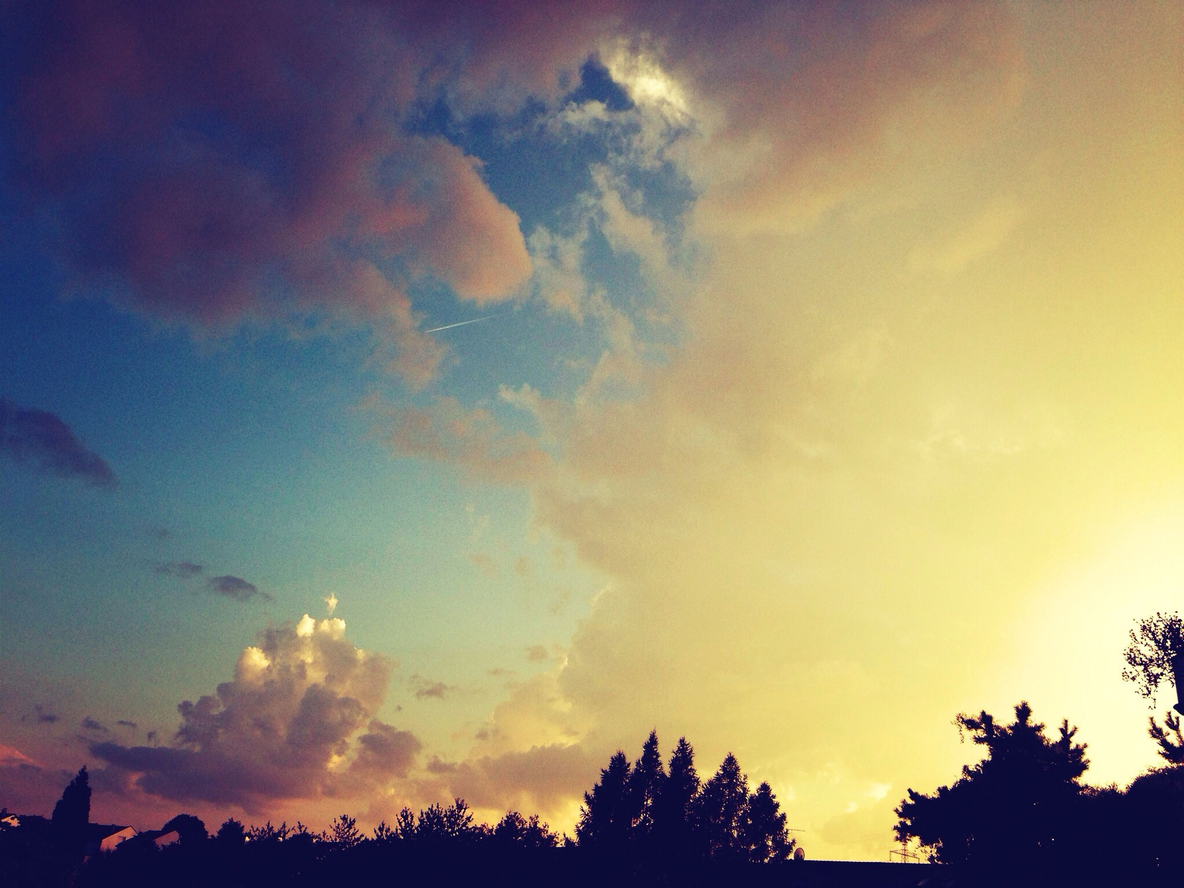 sunset, silhouette, tree, sky, beauty in nature, low angle view, scenics, tranquility, tranquil scene, cloud - sky, nature, orange color, idyllic, dramatic sky, growth, outdoors, cloud, no people, dusk, high section