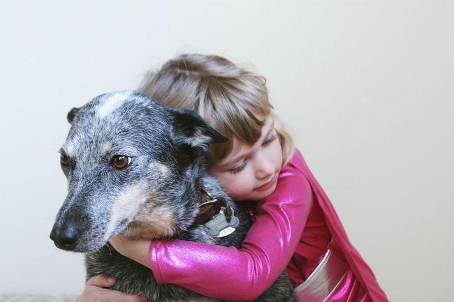 Dog Blue Heeler Australian Cattle Dog Child Girl Best Friends Supergirl Love