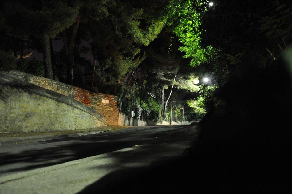 Aix En Provence Green Leaves By Night Long Exposure Night Exposure Colors