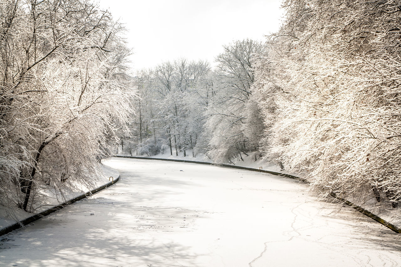 Frozen Canal Amidst Snow Covered Trees