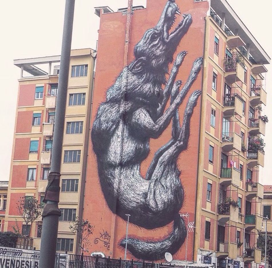 Rome in ART Animal Representation Architecture Day Nature Animal Themes First Eyeem Photo