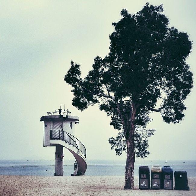 HongKong Repulsebay Color Tree sea bin lifeguard watchtower samsungnote3 samsung