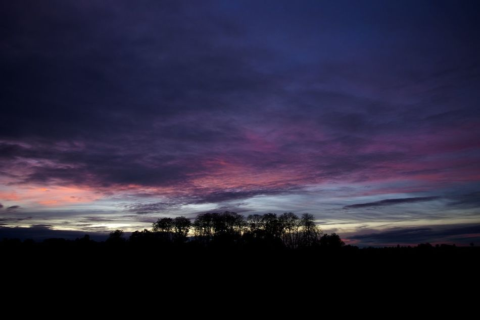 Trees Sunset Clouds And Sky Papworth Everard
