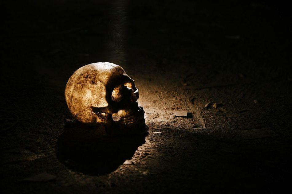 Beautiful stock photos of halloween, Ancient, Archaeology, Close-Up, Copy Space
