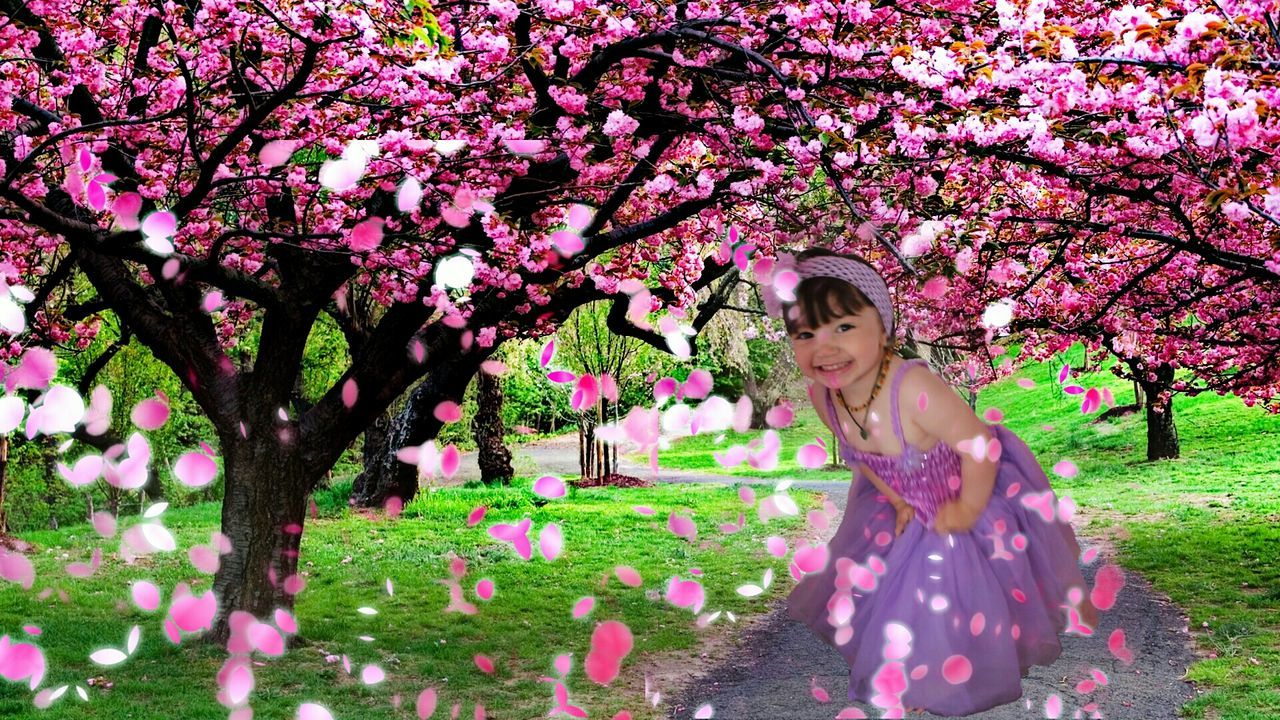 flower, tree, pink color, blossom, springtime, one young woman only, outdoors, nature, young adult, one person, smiling, beauty in nature, happiness, branch, front view, growth, fragility, cheerful, day, one woman only, beauty, only women, freshness, adult, grass, beautiful woman, adults only, full length, people, young women