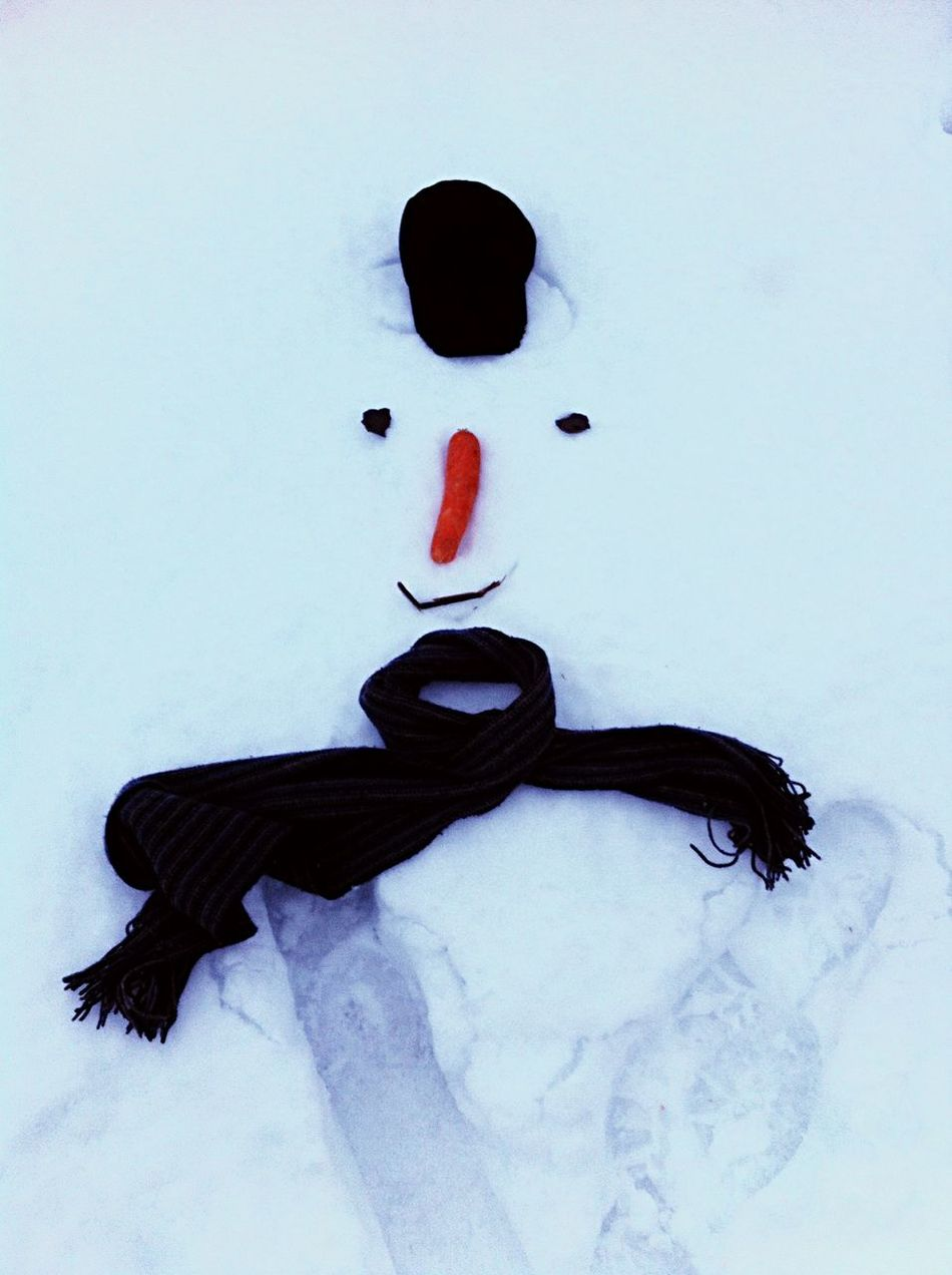 Beautiful stock photos of snowman, Anthropomorphic Face, Carrot, Cold Temperature, Day