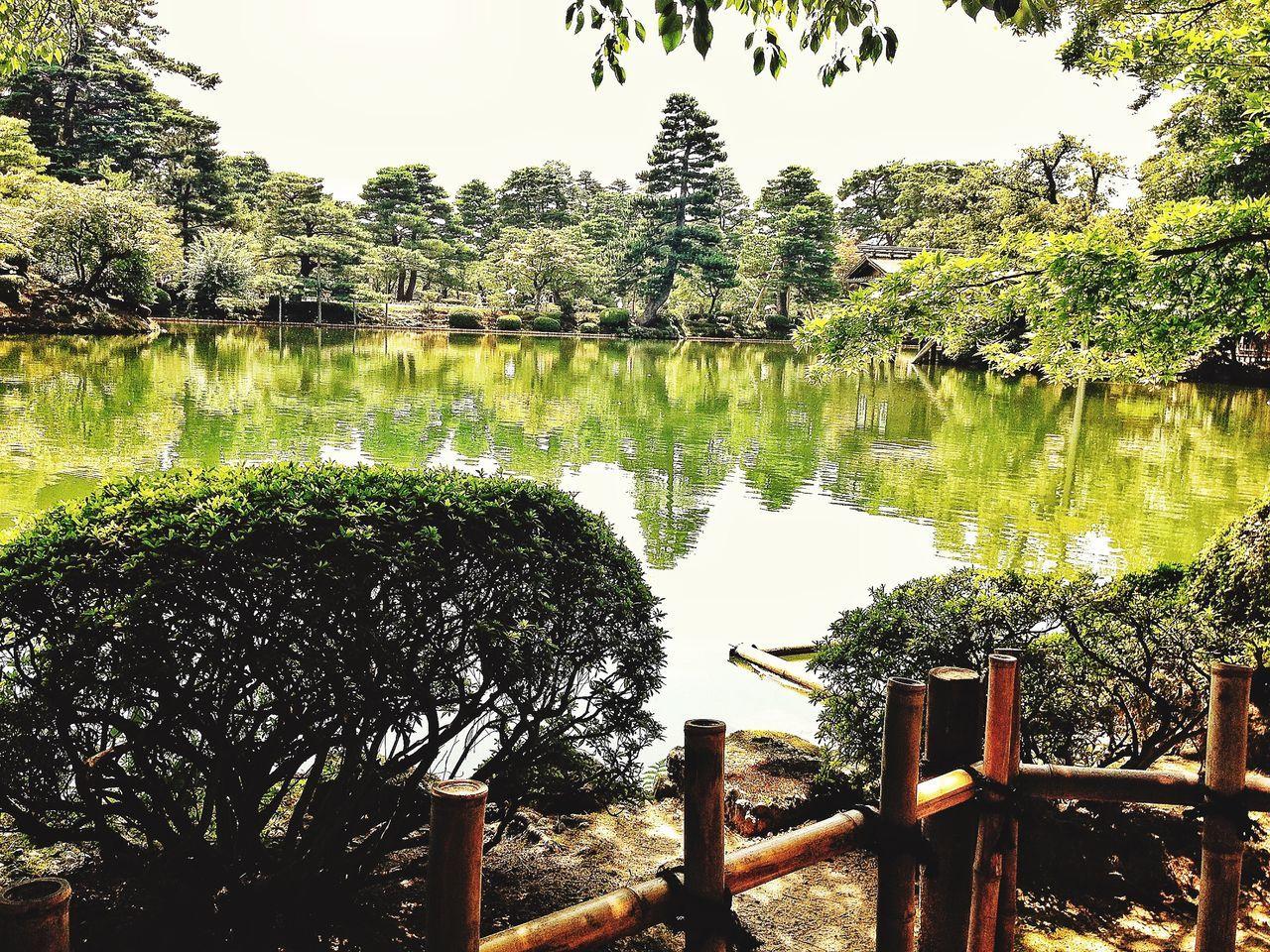 Ultimate Japan Kanazawa Kanazawa,japan EyeEm Nature Lover Japan Japanese Culture Japanese Style Japanese Garden